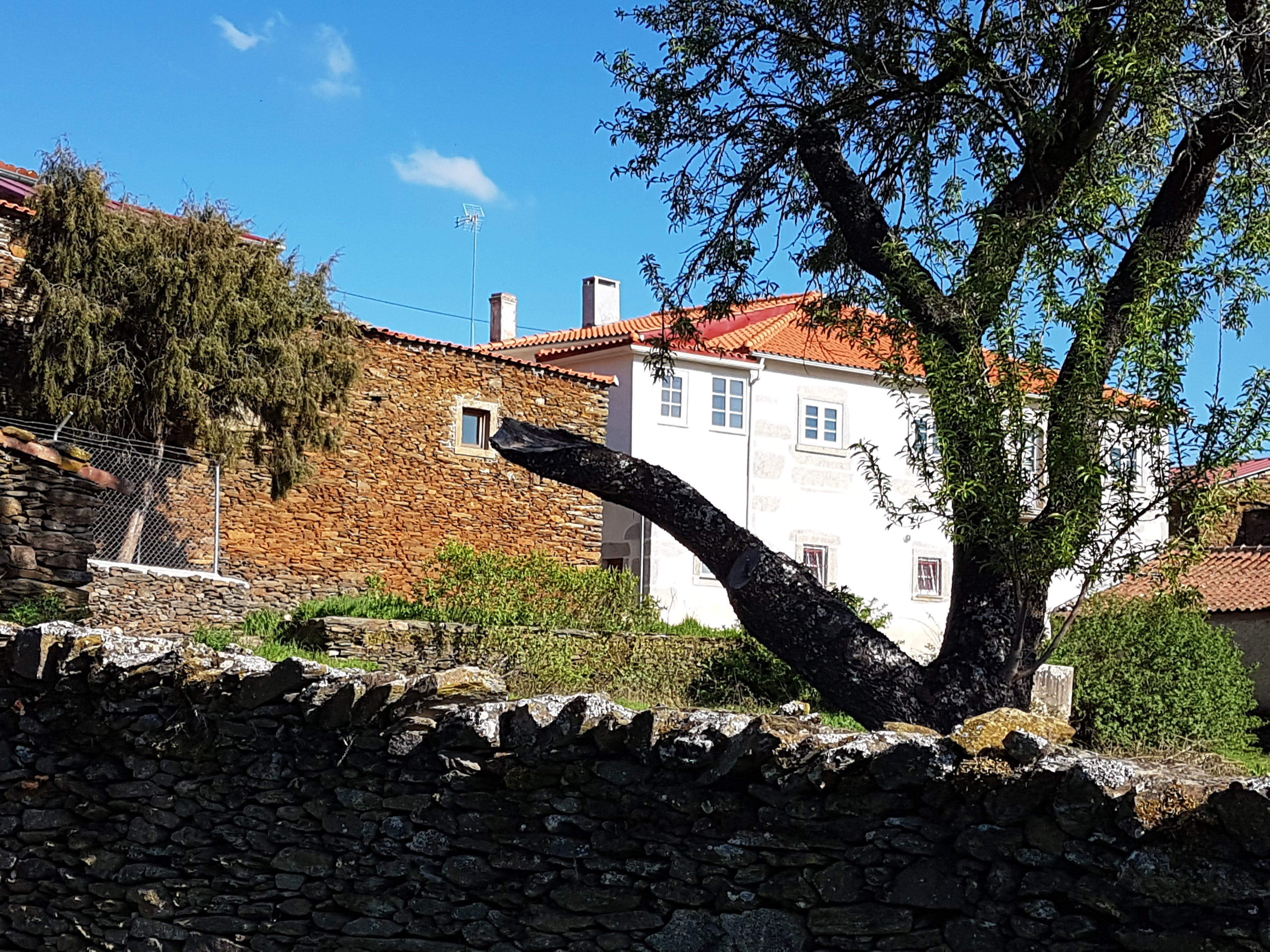 Casa dona Mª Rosa Steba - cópia